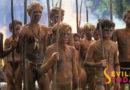 Hallan una colonia en Doñana de niños perdidos en Matalascañas